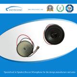 Stereolautsprecher mit Draht und Verbinder