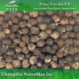 Extrait de Vitex Trifolia