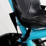 Triciclo novo do bebê do estilo com o brinquedo de 3 rodas para miúdos