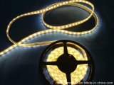 DC12V imperméable SMD 5050 LED Strip