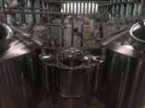 strumentazione di preparazione della birra dell'hotel di 100L- 500L/fermentatore/serbatoio di putrefazione/caldaia freschi di fermentazione da vendere