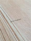 pegamento combinado madera contrachapada de la base E1 del cedro de lápiz de 9m m