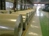 Chapas de aço galvanizadas Prepainted (023)