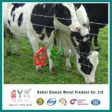 Ферма ограды/ лошади из козьего молока овец ограды/ крупного рогатого скота на линейке для животных