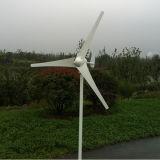 300W piccola turbina di vento da 12/24 di volt (SHJ-300M)