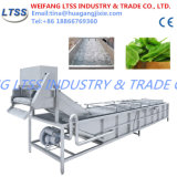 ステンレス鋼の果物と野菜のクリーニング機械