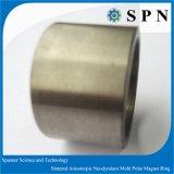 NdFeB sinterde de Veelpolige Ringen van de Magneet voor de Motor van gelijkstroom