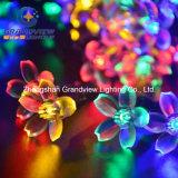 Zeichenkette-Leuchte LED-Weihnachtsleuchte RGB-heller Sakura geformter (AC220V) EU-Standard