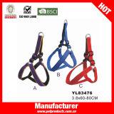 Cablaggio del cane, reticolo della maglia del cablaggio del cane (YL83476)