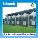 農業及び商業のための熱い販売パソコンシートの温室