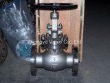 """鋳造物Steel 3 """" 1500lb Globe Valve (J41H-150LB-8)"""