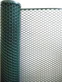 Het plastic Plastic Netwerk van de Fabriek van het Netwerk voor Kip