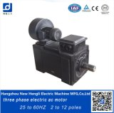 Velocidade Frequência Variável AC High Torque 375kw Electric Motor