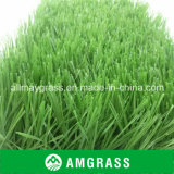 para o relvado de Football Field Green Artificial (ASS-60D)