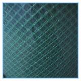 플라스틱 메시 (XB-PLASTIC-0014)의 중국 좋은 공급자