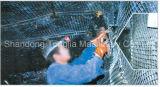 PP/PE PlastikGeogrid Extruder-Maschine