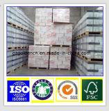 A4 het Document van het Exemplaar 80GSM, het Document van het Exemplaar van de Invoer A4, het Document van het Exemplaar van de Foto A4
