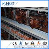 4 gradas un tipo jaula de la capa del pollo de Henan