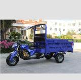 貨物が付いている重いローディング3の車輪のオートバイの三輪車