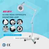 Hot Sale in Poland 5X Magnifying Lamp Beauty Salon Machine