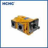 Hochdruckchina-hydraulische doppelte Zahnradpumpe Cbgnl für Verkauf