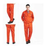 Formation/pantalon cargo pantalon de plein air