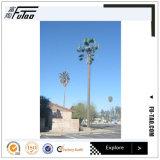 30m camouflé Monopole tour pour Palm Tree