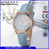Tira de couro ODM/OEM Quartz Senhoras relógio de pulso (Wy-095B)