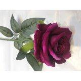 Guangzhou Rosa de terciopelo de seda de la fábrica de Flores Artificiales Flores artificiales