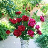 Velvet Rose Flores artificiais para decoração de casamento