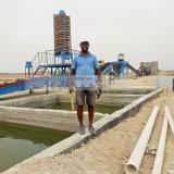 planta de piedra de pequeña capacidad del oro de la planta del oro de la roca 5tons en Egipto