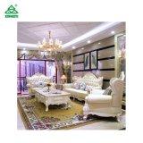 Material de couro com o sofá do estilo elegante