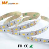 3000LM/m con brillo de la luz de tira de LED SMD5630