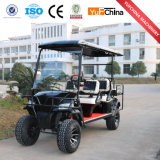 Económica y práctica 48V DC Motor del carro de golf eléctrico