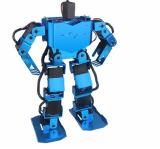 17dof onderwijsHumanoid Robot met 17 Servo en Volledige Toebehoren van de Steun, de Onderwijs Tweevoetige Robot Humanoid Van uitstekende kwaliteit