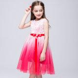 Дети девочек цветы Voile тюль цвет градиента пристегнуты официальных платье платье партии официальной одежды