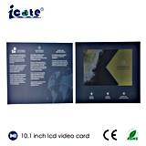 10.1 дюйма LCD Videopak с клеем Mattle