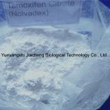 Tamoxifen 구연산염 기름 Nolvadex-20 보디 빌딩 주기 대략 완성되는 액체