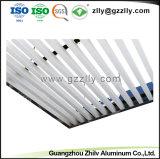 Qualitäts-Baumaterial-Aluminiumleitblech-Decke für Handelsdekoration