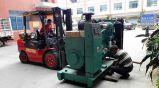 Generator des Cummins-Dieselmotor-4BTA3.9-G2/elektrischer Generator 50kw