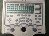 저가 최신 판매 모형 Digitalbw 휴대용 퍼스널 컴퓨터 초음파 스캐너