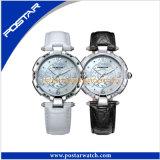 Montre-bracelet de luxe de diamant d'acier inoxydable de mode de qualité