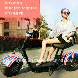 Schmutz-Fahrrad-elektrisches Roller-Motorrad-heißer Verkauf im Markt
