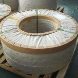La plaque SUS304L en acier inoxydable et les bandes de SUS316L