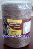 Ficelle en polypropylène, PP, PP Pakcing de liage ficelle/cordon, PP, String ficelle de jardin