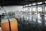 Приправленное цена машинного оборудования разливая по бутылкам завода бутылки воды заполняя