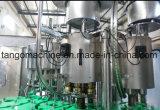 Completare la spremuta della bevanda del succo di frutta della bottiglia che riempie facendo la linea di produzione impaccante