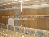 Pista de enfriamiento del sistema de la refrigeración por agua del equipo de las aves de corral
