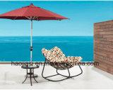 /Rattan esterno/presidenza dell'oscillazione mobilia del giardino/patio/hotel & Tabella di alluminio del lato ha impostato (HS 1018SC&HS 6050ET)