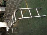 Multi-Functional лестницы лестницы (12 шагов) (SM-CLA403)